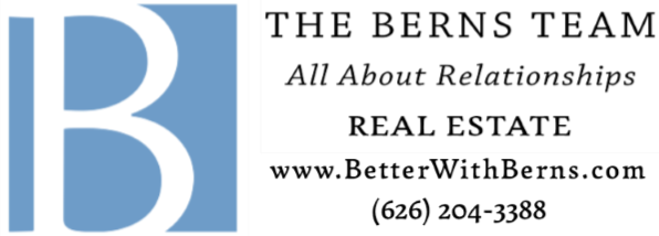 The Berns Team